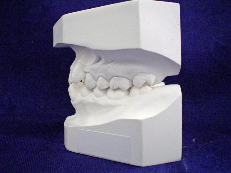 Dobry Ortodonta